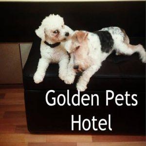 Hotel za Vaše ljubimce